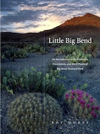 Little Big Bend